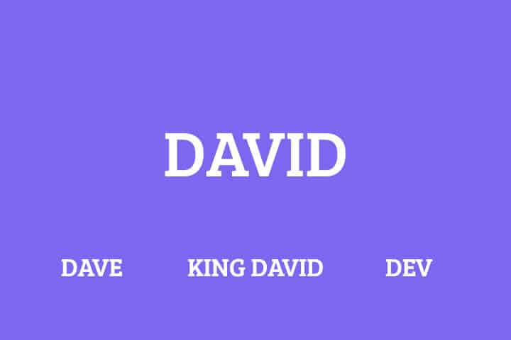 Nicknames for david
