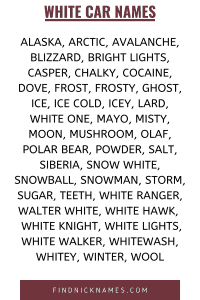 Names for a white car